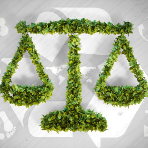Environmental Law: Government and Public Policy Towards the Environment